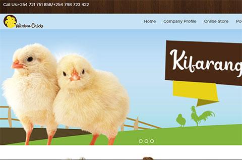 Wisdom Chicks Ecommerce website design